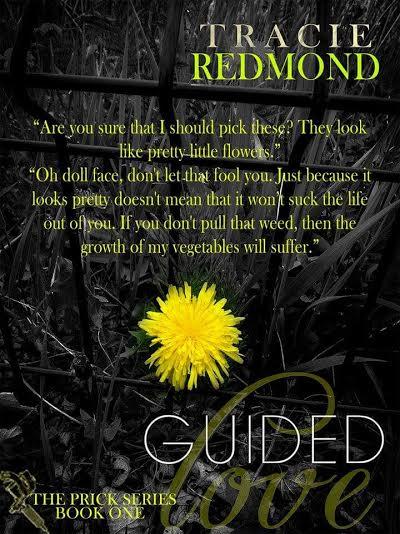 guided love teaser