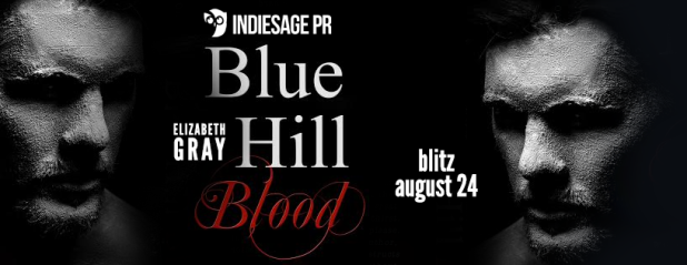 blue hill blood banner