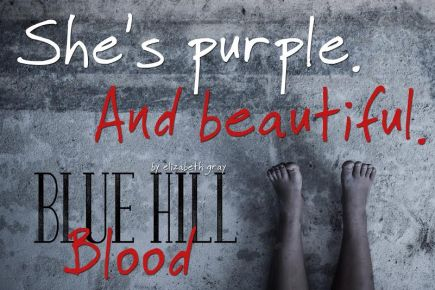 blue hill blood teaser