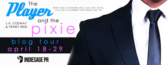 the player and the pixie banner