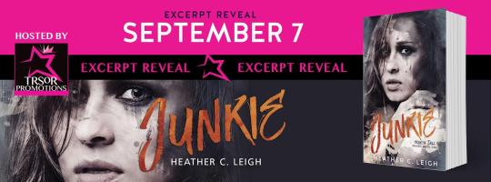 junkie excerpt reveal